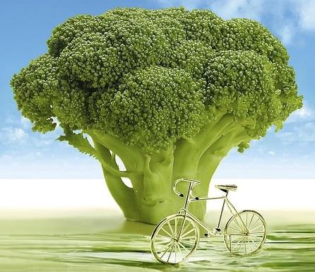 栄養満点のブロッコリー