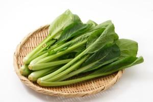 小松菜の効能とおすすめレシピ