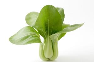 チンゲン菜の効能とおすすめレシピ