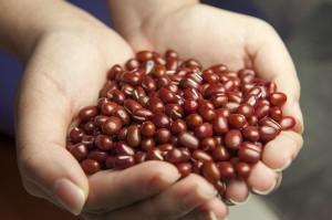小豆(あずき)の効能とおすすめレシピ