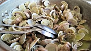 はまぐり(蛤)の効能とおすすめレシピ