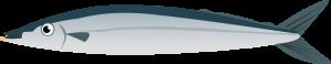 干した秋刀魚の栄養成分表
