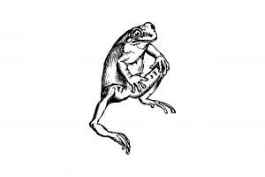 蛙(食用ガエル/ウシガエル)の効能とおすすめレシピ、食品成分表