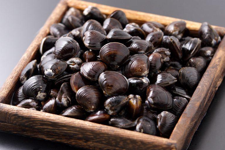 シジミの栄養とおすすめレシピ