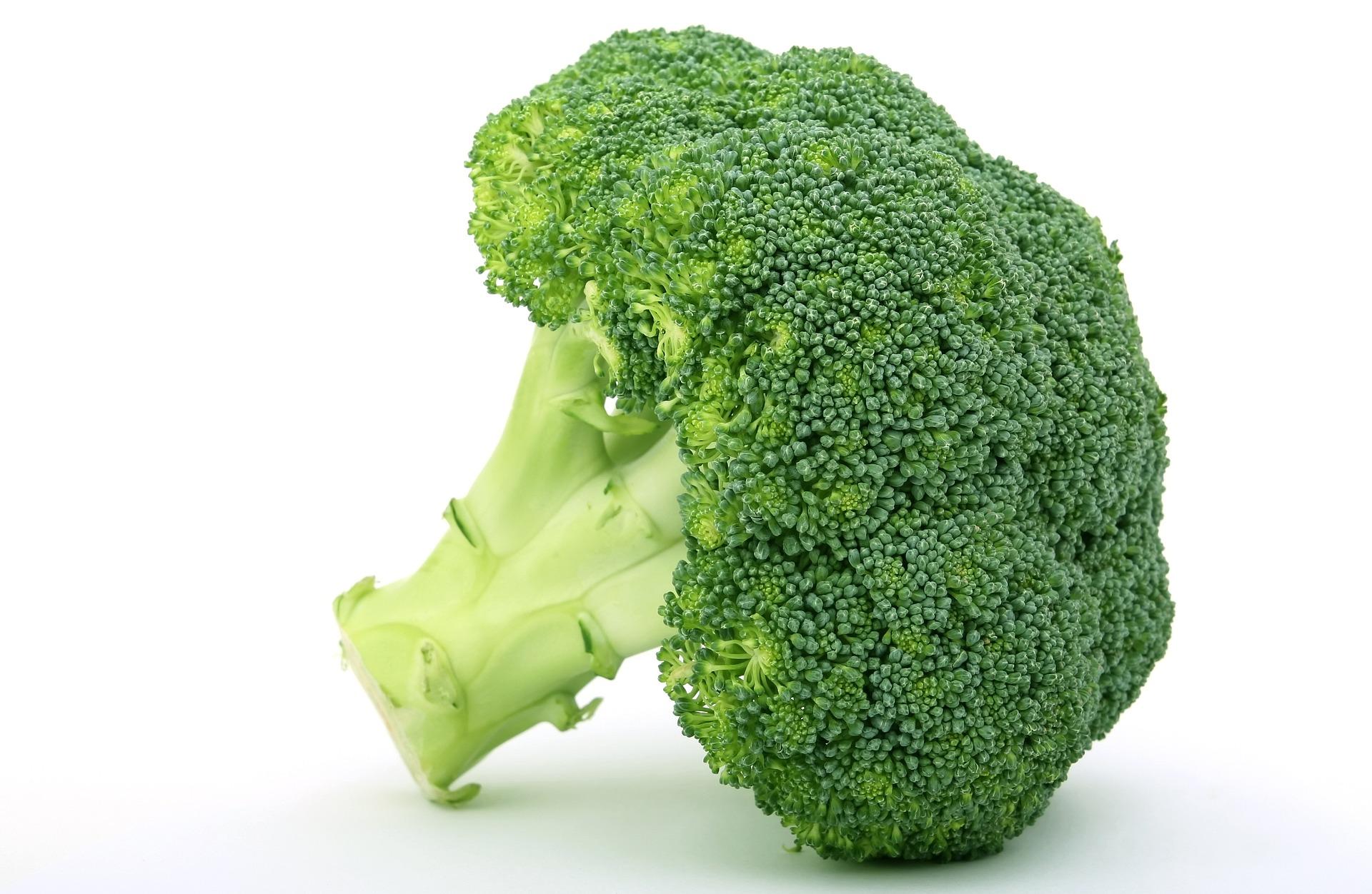 ブロッコリーの特徴とおすすめレシピ、食品成分表