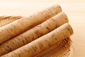 ごぼうの効能とおすすめレシピ、食品成分表