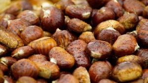 栗の効能とおすすめレシピ、食品成分表