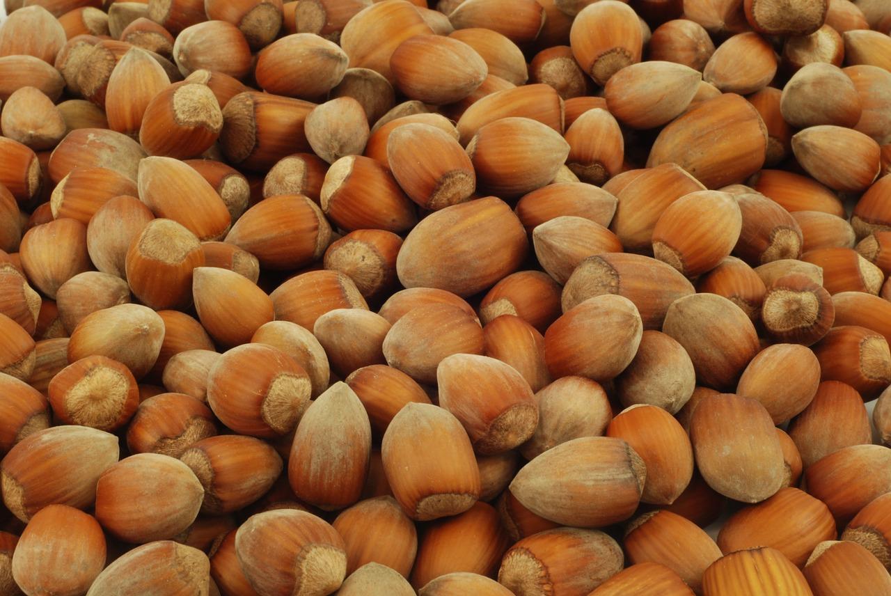 ヘーゼルナッツの特徴とおすすめレシピ、食品成分表