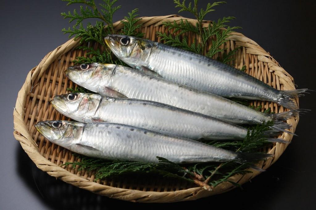 いわし(鰯)の栄養とおすすめレシピ、食品成分表
