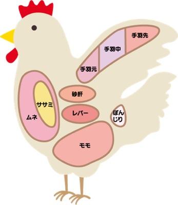 鶏肉の部位