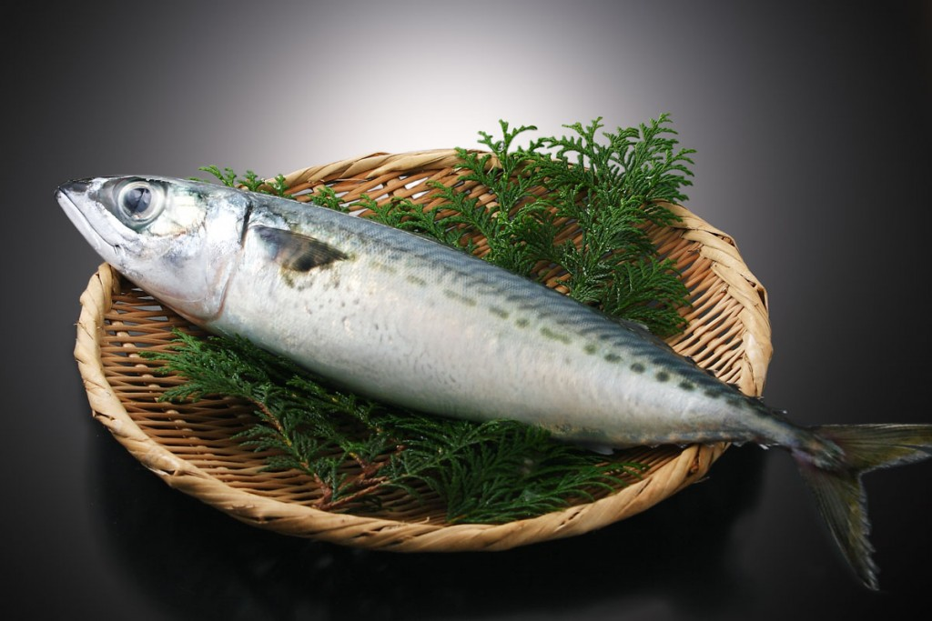 鯖(さば)の効能とおすすめレシピ