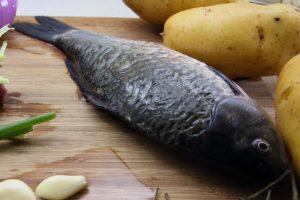 フナの効能とおすすめレシピ、食品成分表