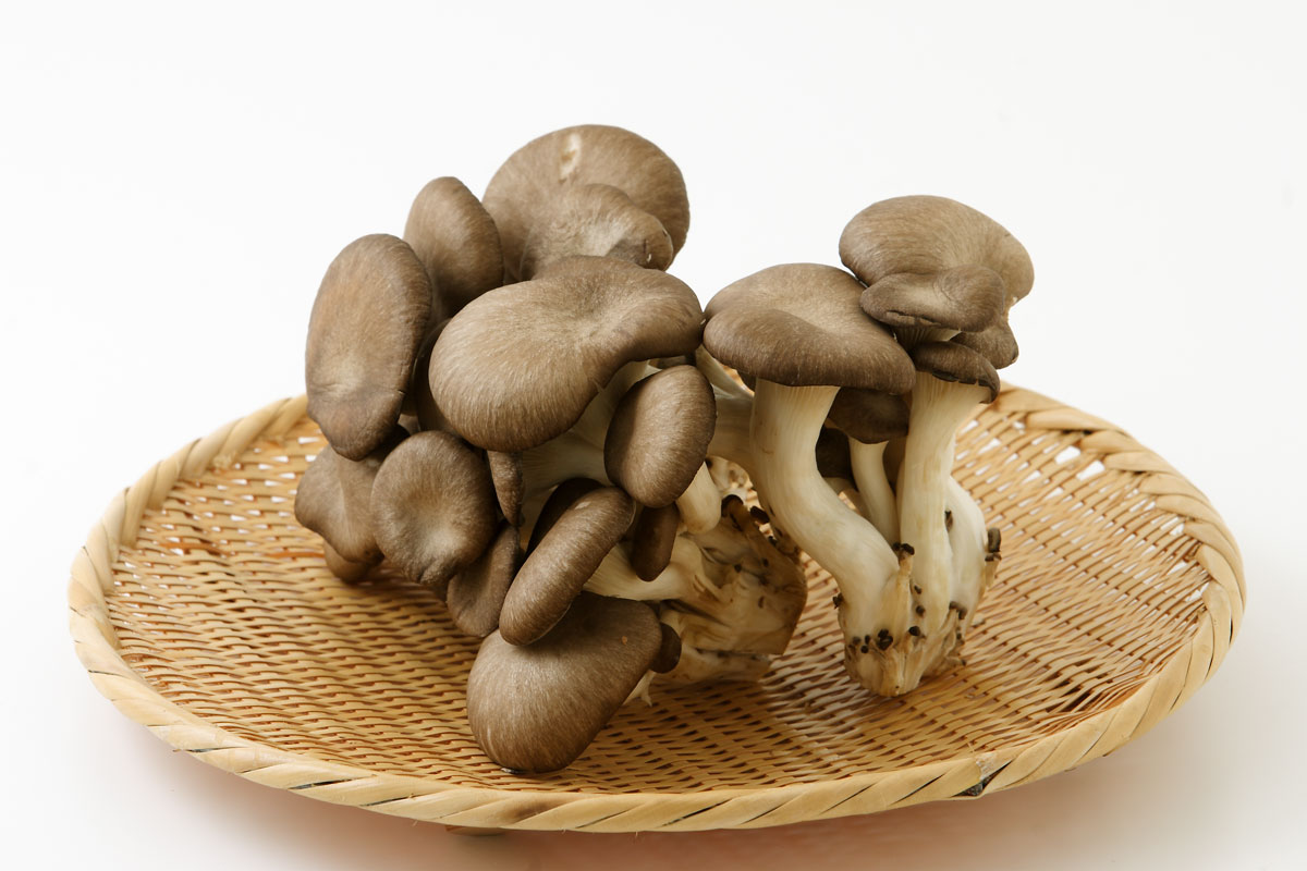 ひらたけ(平茸)の栄養とおすすめレシピ、食品成分表
