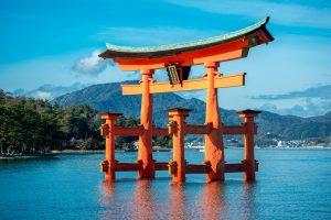 広島菜の効能とおすすめレシピ、食品成分表
