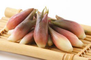 茗荷(みょうが)の効能とおすすめレシピ、食品成分表