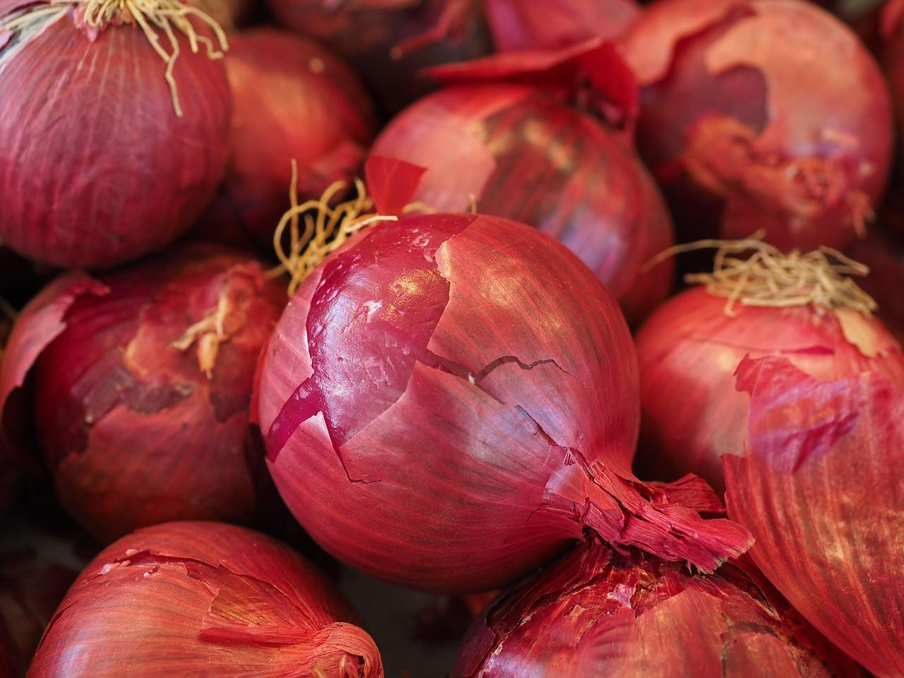 紫玉ねぎ(赤玉ねぎ、レッドオニオン)の特徴とおすすめレシピ、食品成分表