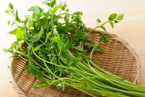セリの効能とおすすめレシピ、食品成分表