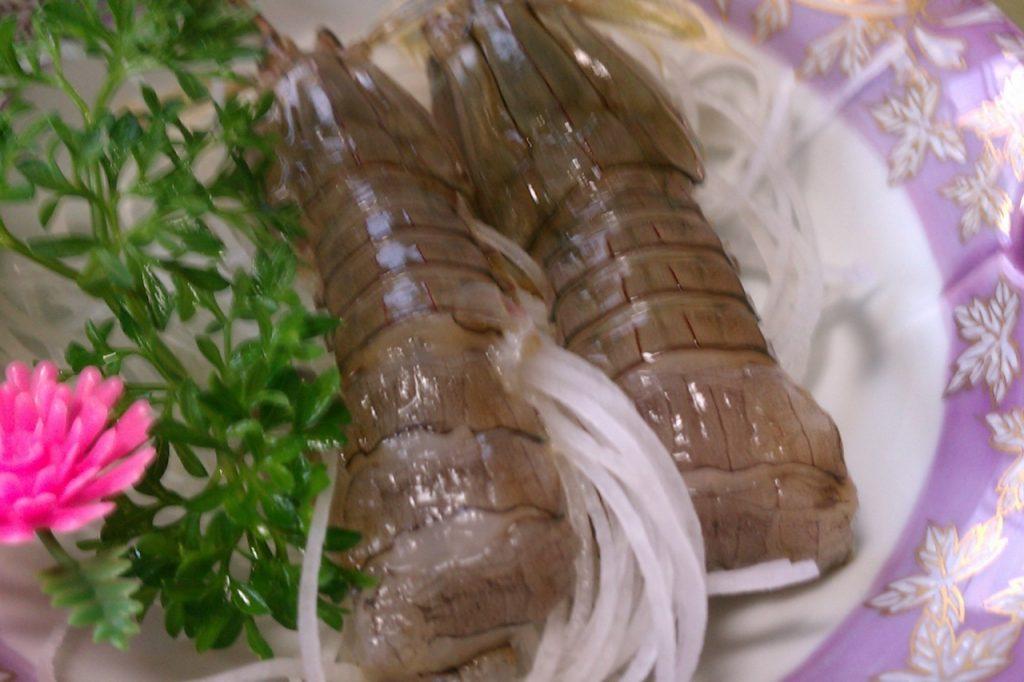 シャコ(蝦蛄)の栄養とおすすめレシピ、食品成分表