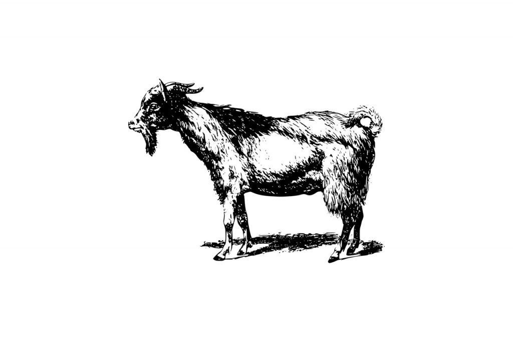 ヤギ肉の栄養とおすすめレシピ、食品成分表