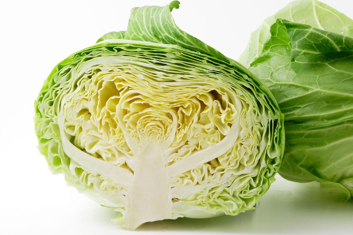 キャベツ大量消費レシピ 〜 消化を助けるビタミンUを豊富に摂取