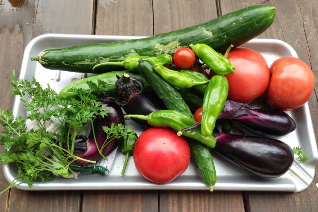 北海道の家庭菜園の野菜
