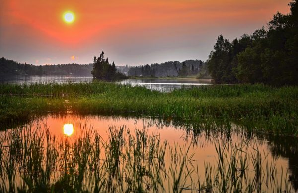 沼地の夕暮れ
