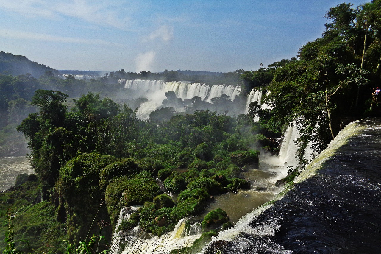 ブラジルの滝と木