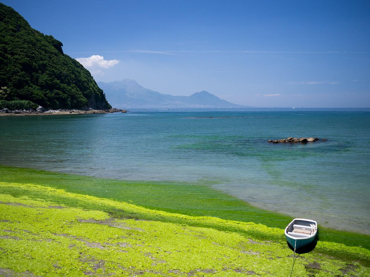 熊本の海岸の天草